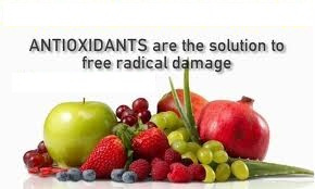 antioxidants_fruits