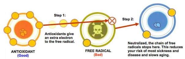 free-radical-antioxidant.jpg