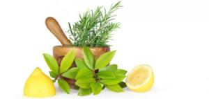 master-herbalist