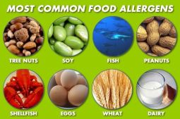 most_common_food_allergens
